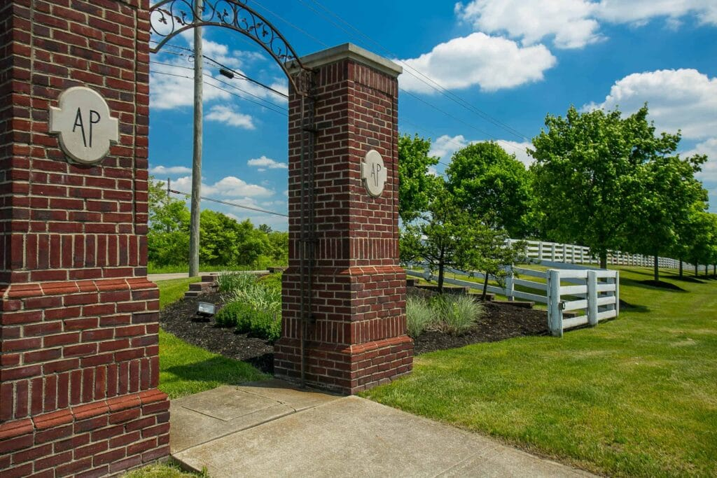 Albany Park (2)