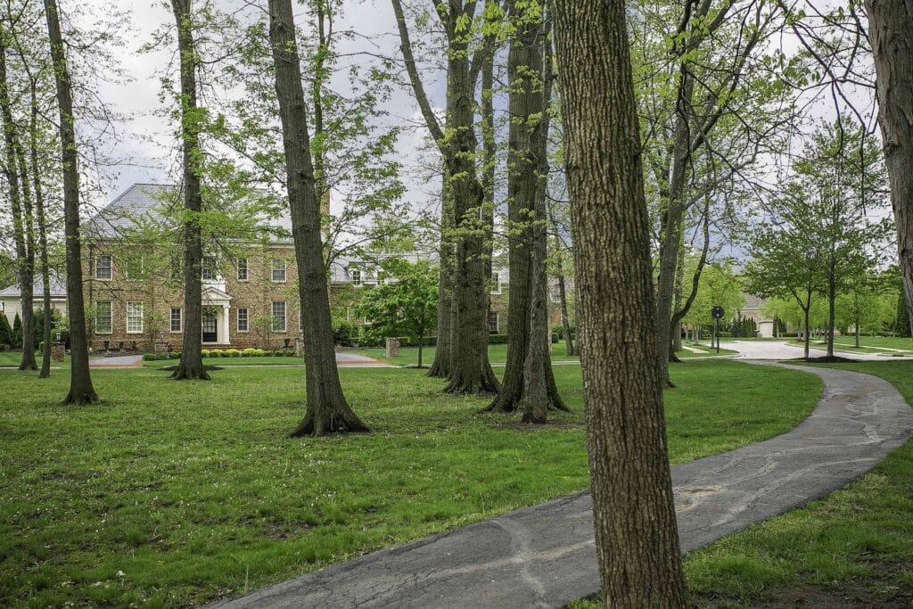lambton park path