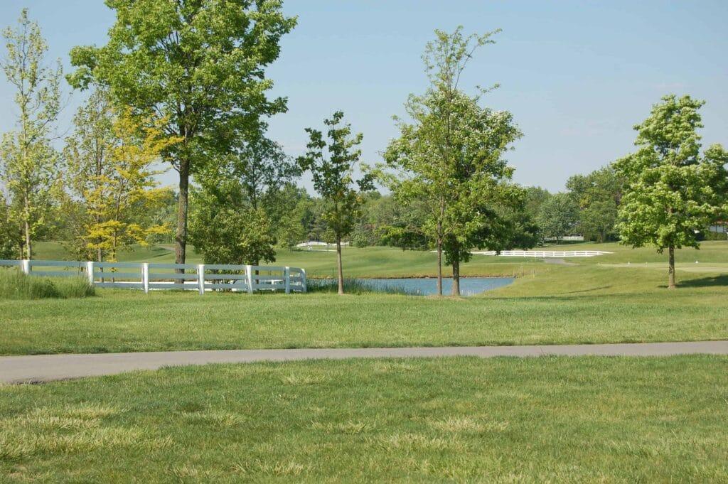 Ebrington golf course view